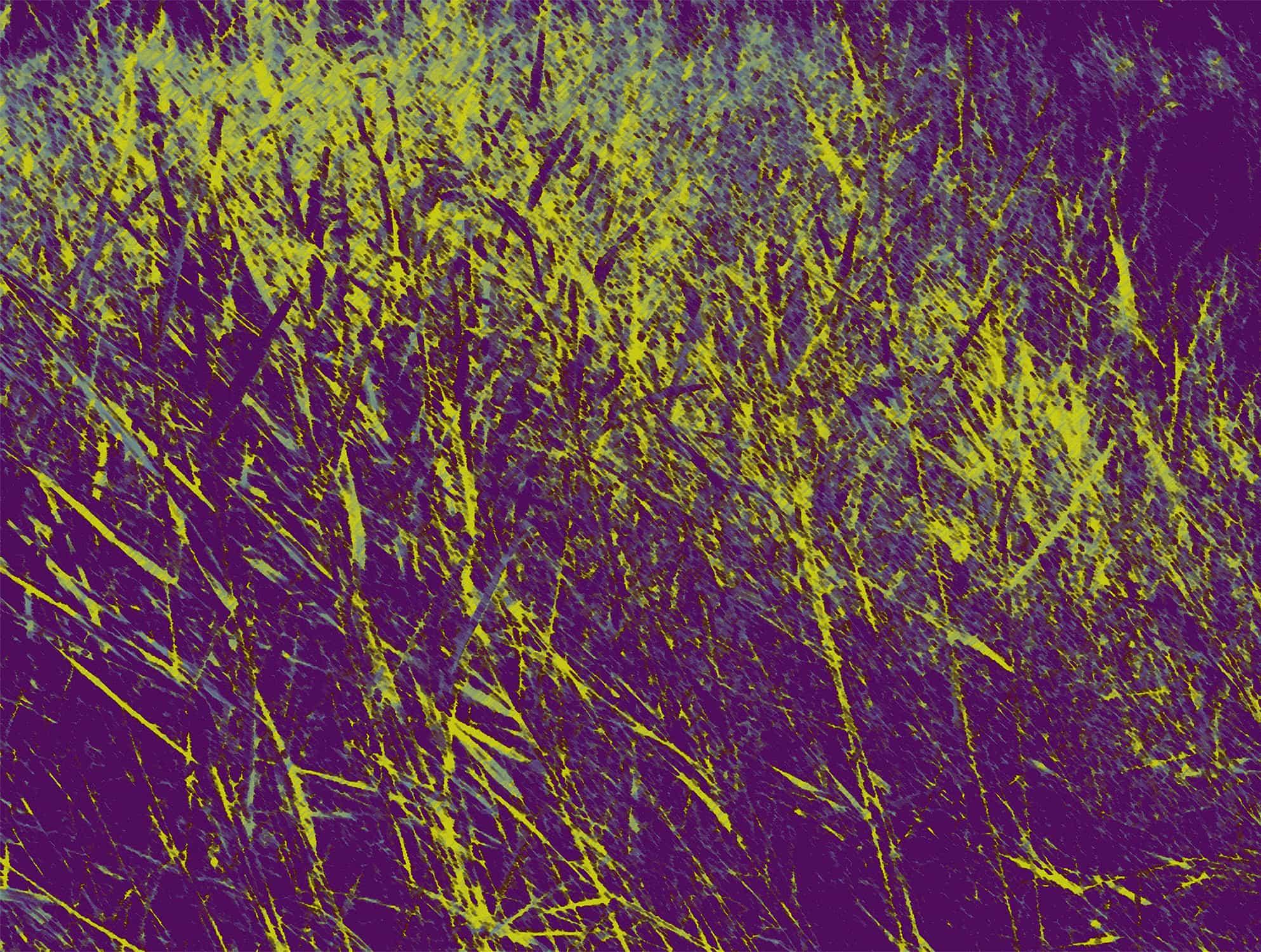 Herbage jaune  (2012)