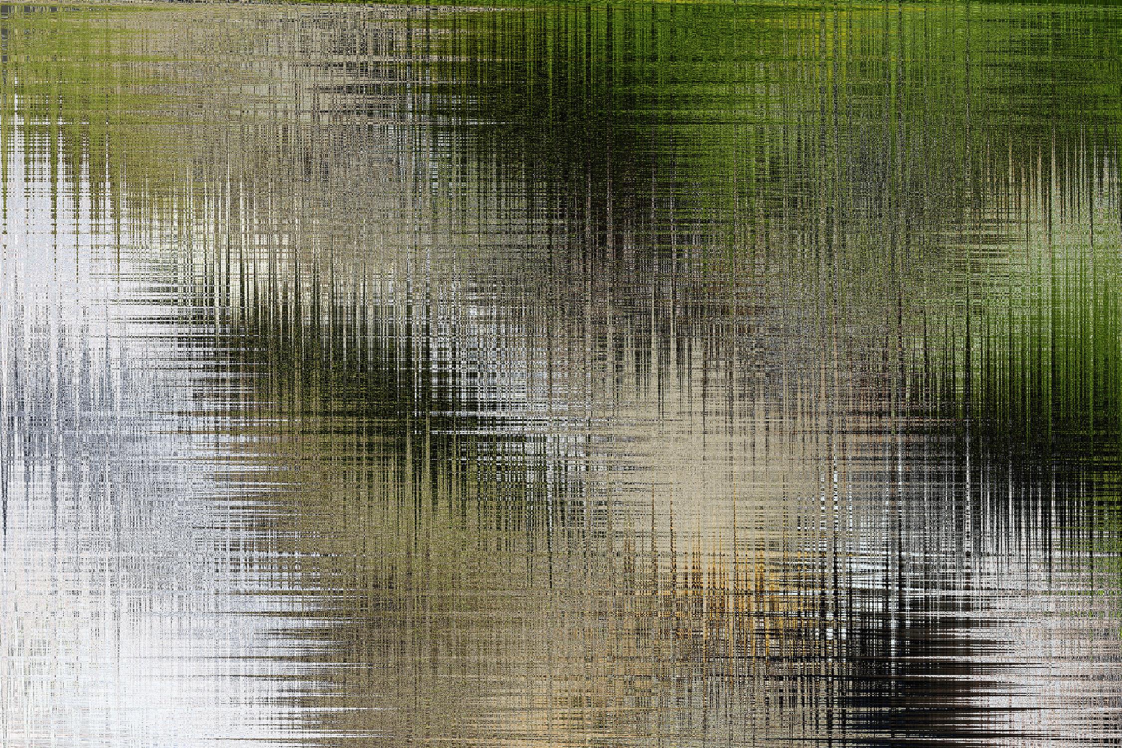Wetland (2018)